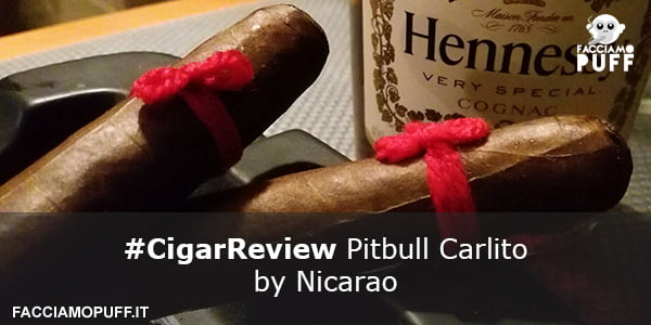 Pitbull Carlito by Nicarao | e la realtà surreale | Cigar Review
